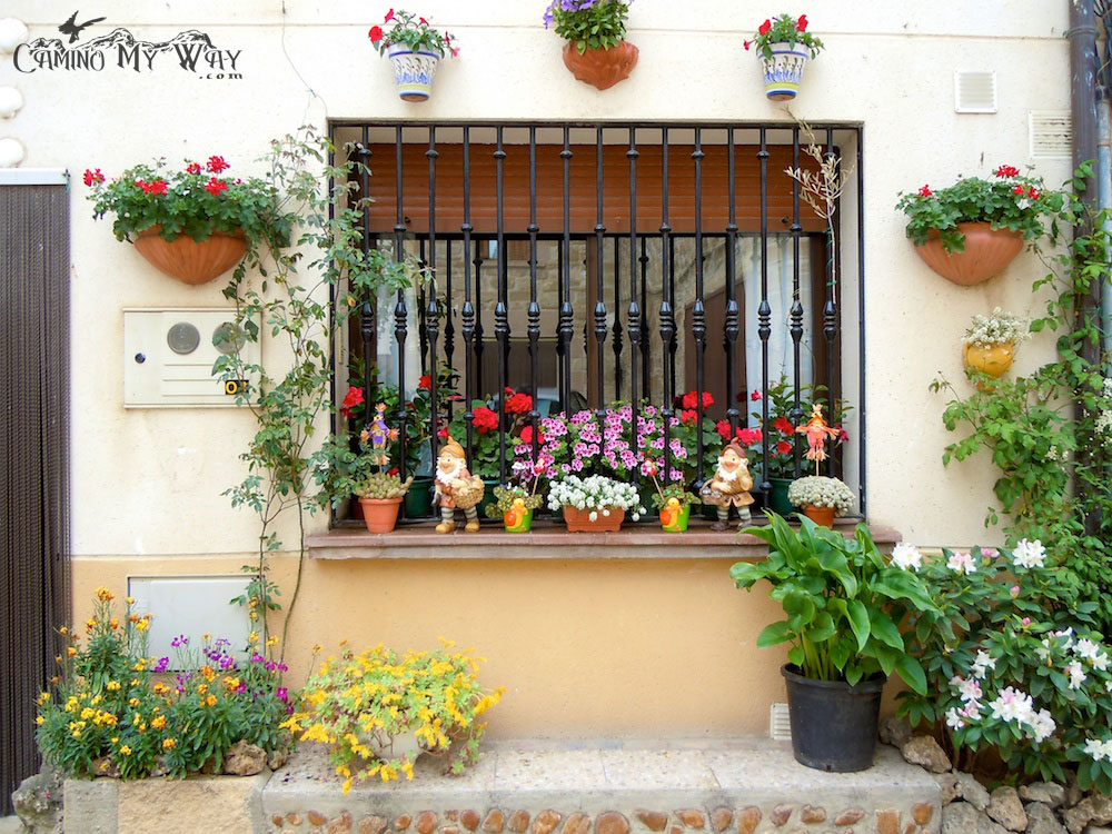 Photo of Flowers in front of home, Lorca, Spain